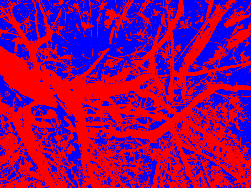 06-01 - [IMG_0259] - (2015,03,03)