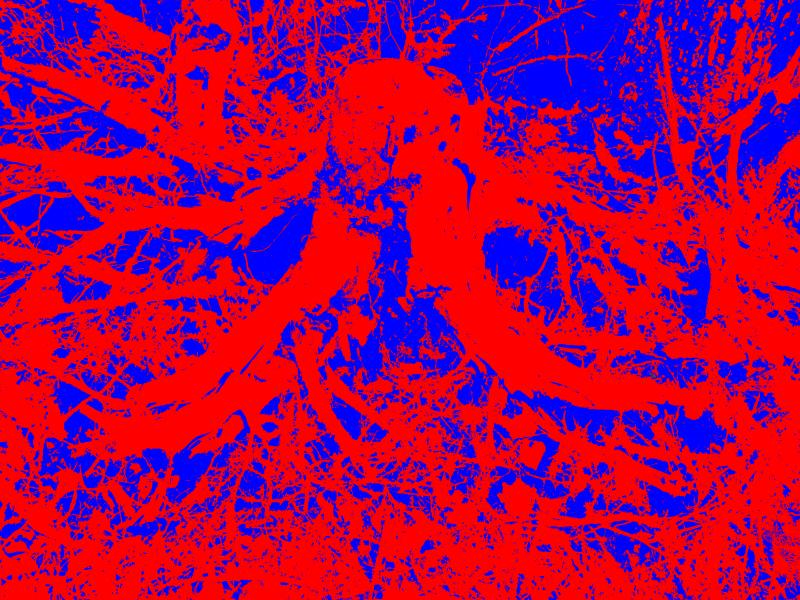 07-01 - [IMG_0267] - (2015,03,03)