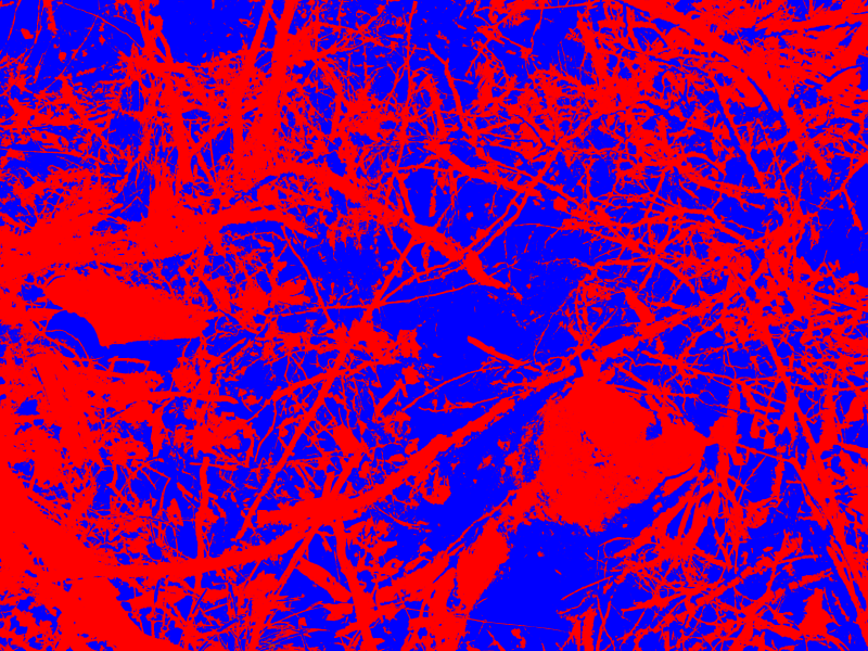 10-01 - [IMG_0264] - (2015,03,03)