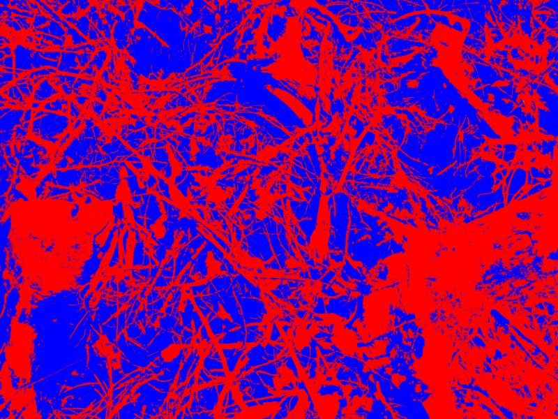 11-01 - [IMG_0263] - (2015,03,03)